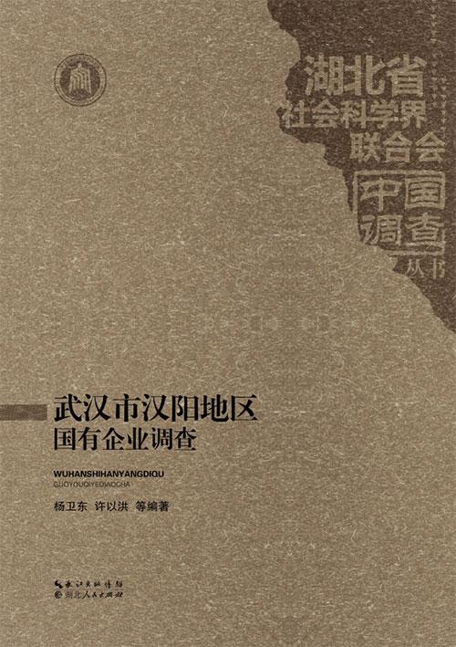 武汉市汉阳地区国有企业调查